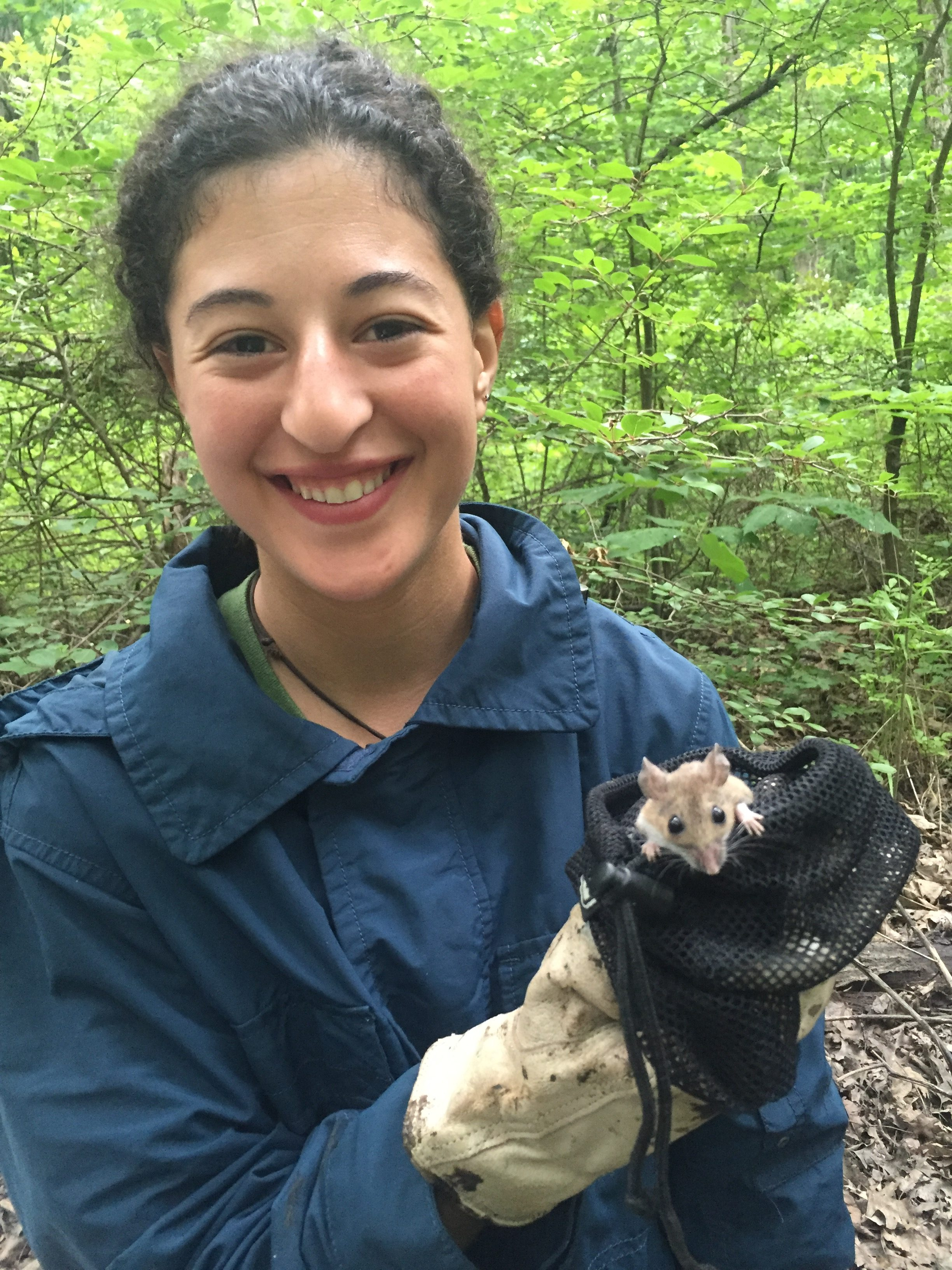 Graduate student Ilianna Anise conducting field work holding a mouse